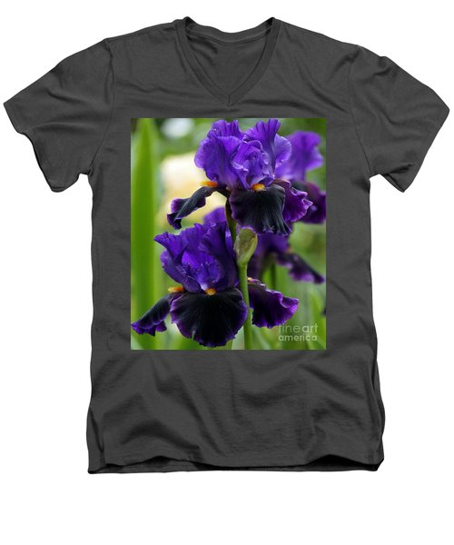 Purple Majesty Men's V-Neck T-Shirt