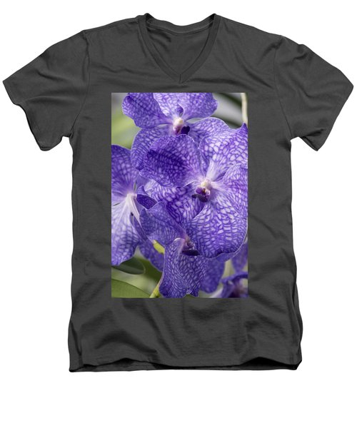 Purple Orchids Men's V-Neck T-Shirt