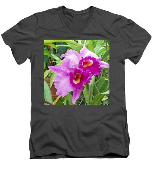 Purple Cattleya Orchids Men's V-Neck T-Shirt by Ellen Henneke