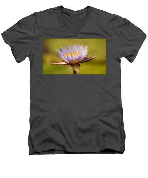 Purple Promise Men's V-Neck T-Shirt
