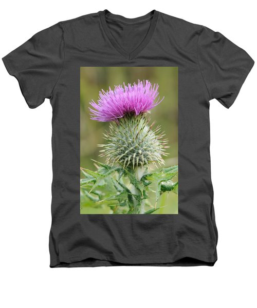 Purple Thistle Men's V-Neck T-Shirt