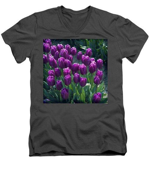 Purple Tulips Men's V-Neck T-Shirt