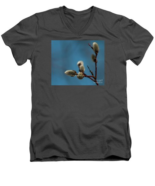 Pussy Willow... Men's V-Neck T-Shirt