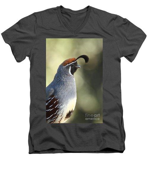 Quail Portrait Men's V-Neck T-Shirt