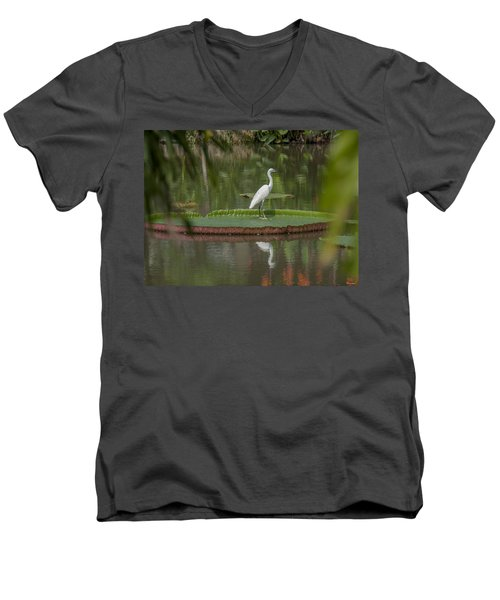 Queen Victoria Water Lily Pad With Little Egret Dthb1618 Men's V-Neck T-Shirt
