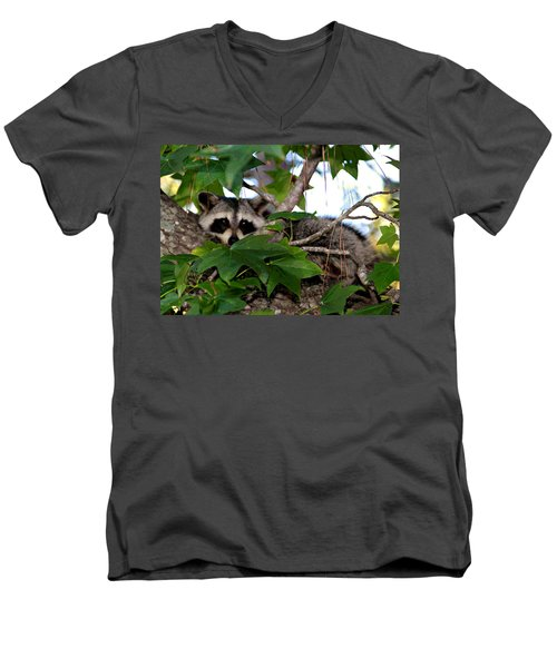 Raccoon Eyes Men's V-Neck T-Shirt