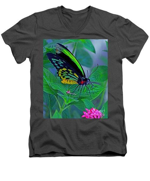 Rainbow Butterfly Men's V-Neck T-Shirt