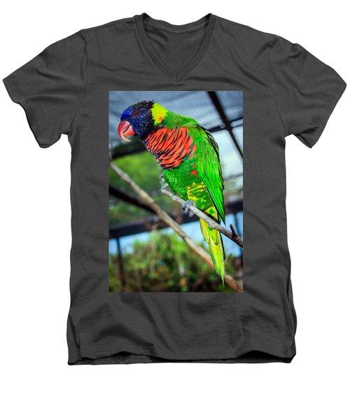 Men's V-Neck T-Shirt featuring the photograph Rainbow Lory by Sennie Pierson