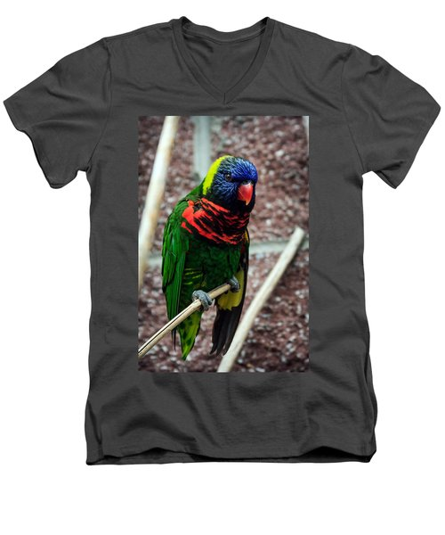 Men's V-Neck T-Shirt featuring the photograph Rainbow Lory Too by Sennie Pierson