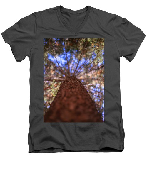 Men's V-Neck T-Shirt featuring the photograph Rainbow Pine by Aaron Aldrich