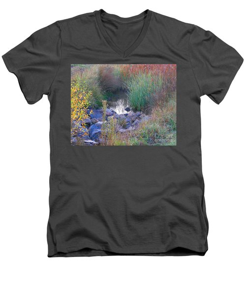 Rainbow Pond Men's V-Neck T-Shirt