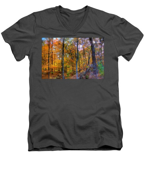 Rainbow Woods Men's V-Neck T-Shirt