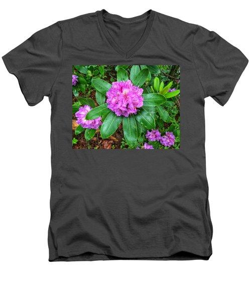 Rainy Rhodo Men's V-Neck T-Shirt