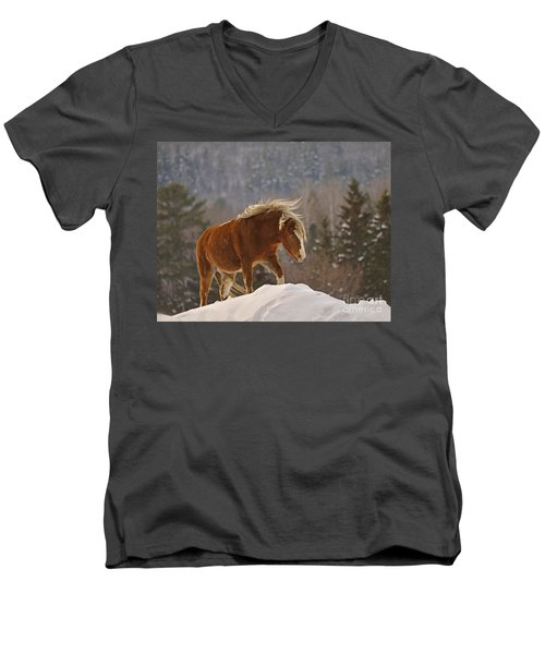 Rancher's Dream Men's V-Neck T-Shirt