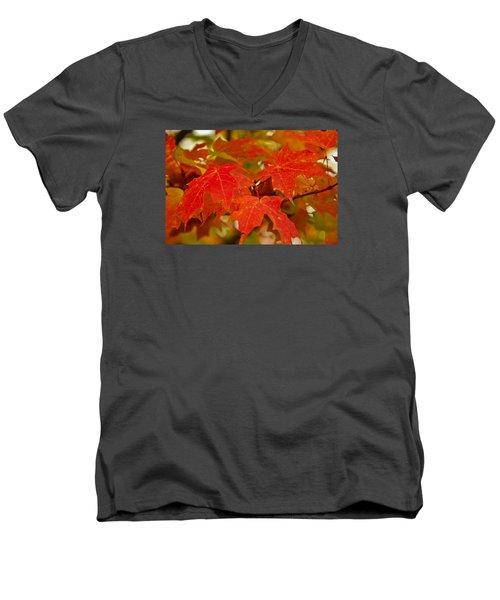 Ravishing Fall Men's V-Neck T-Shirt