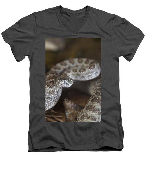 A Rattlesnake Thats Ready To Strike Men's V-Neck T-Shirt