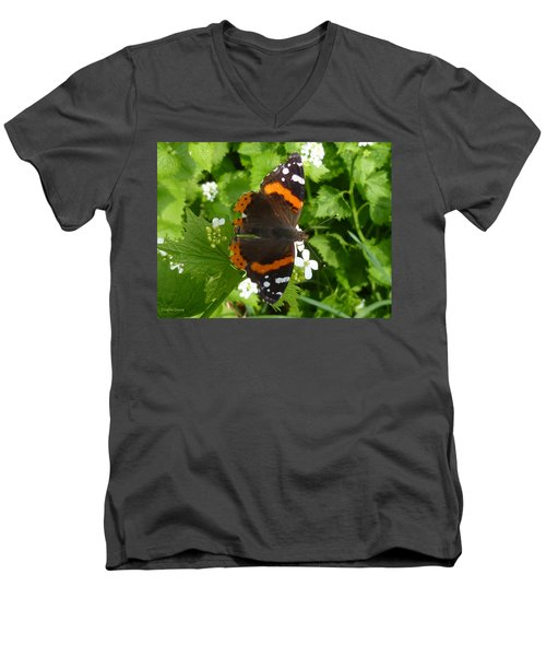 Men's V-Neck T-Shirt featuring the photograph Red Admiral In Toronto by Lingfai Leung