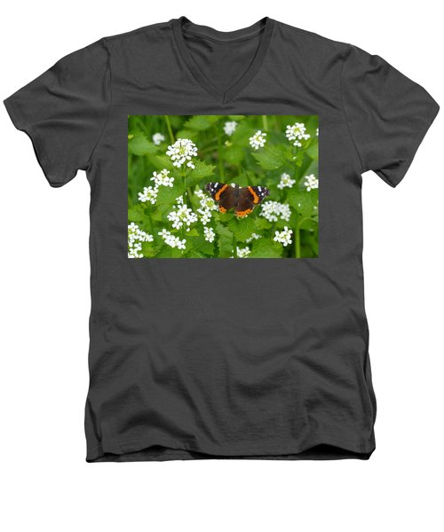 Men's V-Neck T-Shirt featuring the photograph Red Admirals by Lingfai Leung
