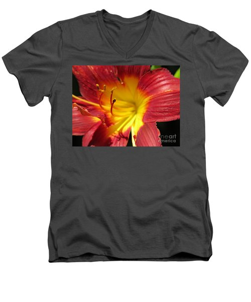 Red And Yellow Day Lily Men's V-Neck T-Shirt