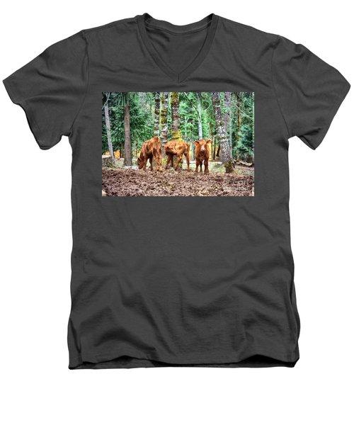 Red Angus Calves Men's V-Neck T-Shirt
