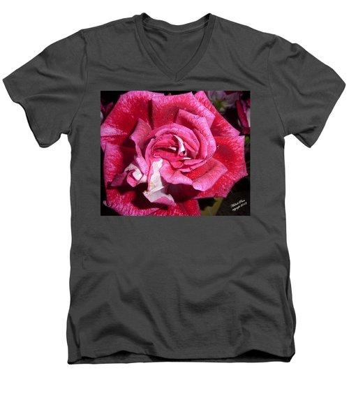 Red Beauty 2  Men's V-Neck T-Shirt