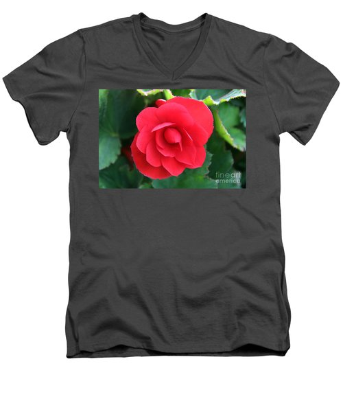 Men's V-Neck T-Shirt featuring the photograph Red Begonia by Sergey Lukashin