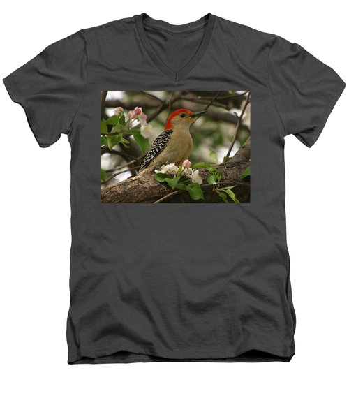 Men's V-Neck T-Shirt featuring the photograph Red-bellied Woodpecker by James Peterson