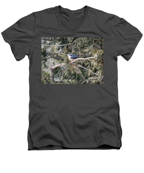 Men's V-Neck T-Shirt featuring the photograph Red Breasted Nuthatch by Brenda Brown