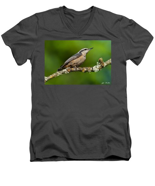 Red Breasted Nuthatch In A Tree Men's V-Neck T-Shirt