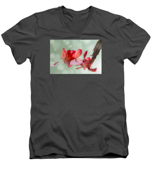 Red Christmas Cactus Bloom Men's V-Neck T-Shirt by Patti Deters