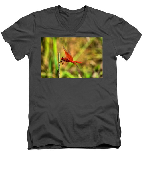Red Dragon Dreams Men's V-Neck T-Shirt
