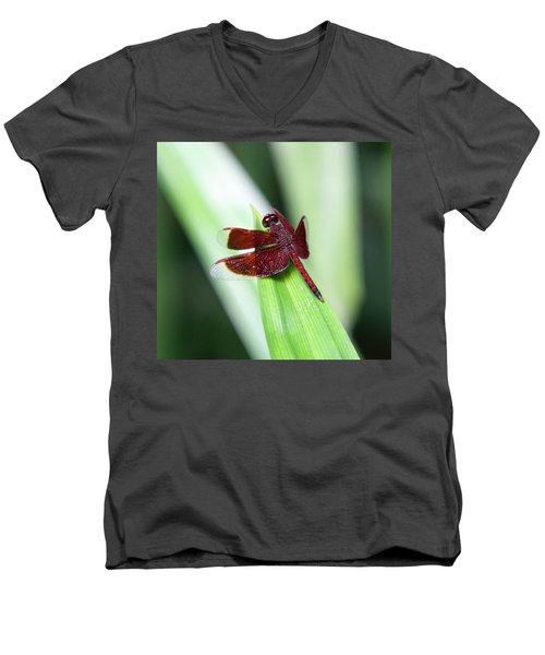 Men's V-Neck T-Shirt featuring the photograph Red Dragon by Shoal Hollingsworth