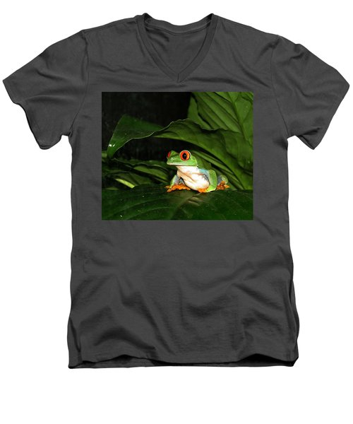 Red Eyed Green Tree Frog Men's V-Neck T-Shirt
