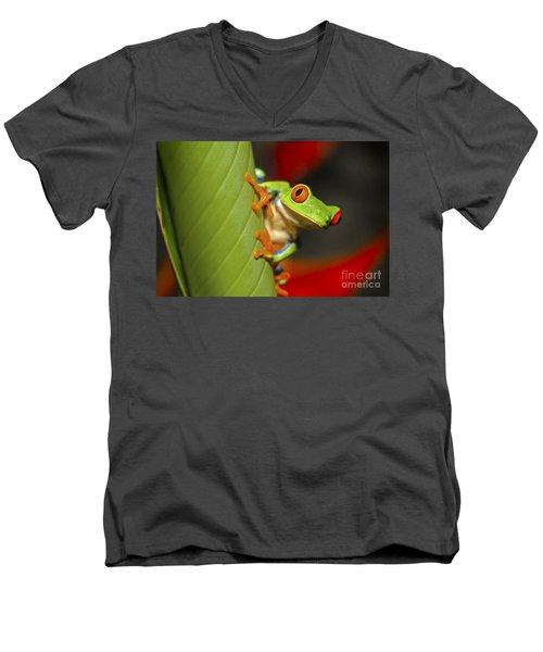 Red Eyed Leaf Frog Men's V-Neck T-Shirt by Bob Hislop