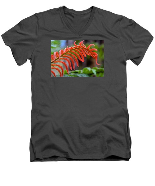 Autumn Fern In Hawaii Men's V-Neck T-Shirt by Venetia Featherstone-Witty