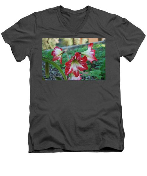 Red Flower 1 Men's V-Neck T-Shirt