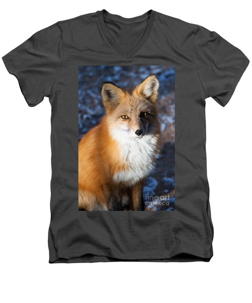 Men's V-Neck T-Shirt featuring the photograph Red Fox Standing by John Wadleigh