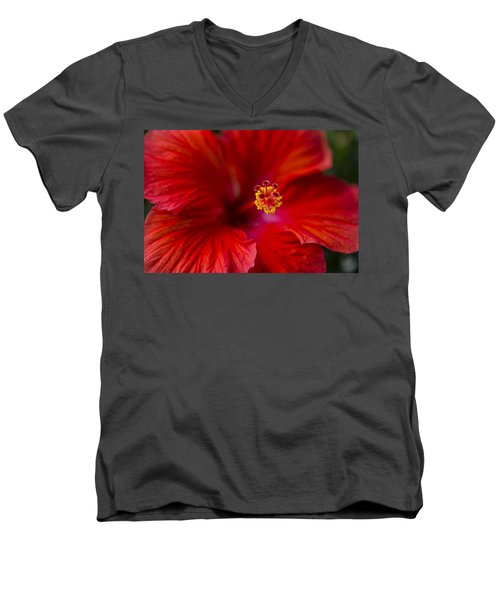 Red Hibiscus Men's V-Neck T-Shirt by Eduard Moldoveanu