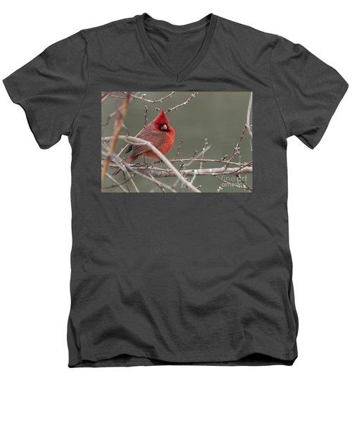 Red In Winter Men's V-Neck T-Shirt