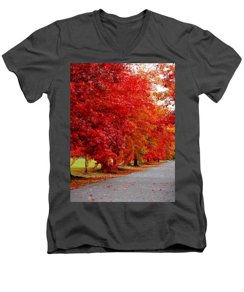 Red Leaf Road Men's V-Neck T-Shirt
