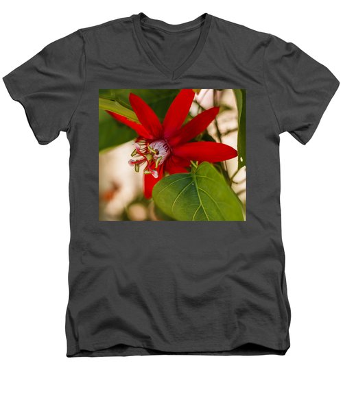 Men's V-Neck T-Shirt featuring the photograph Red Passion Flower by Jane Luxton