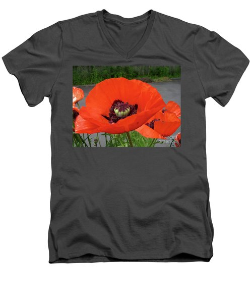 Red Poppy Men's V-Neck T-Shirt by Barbara Griffin