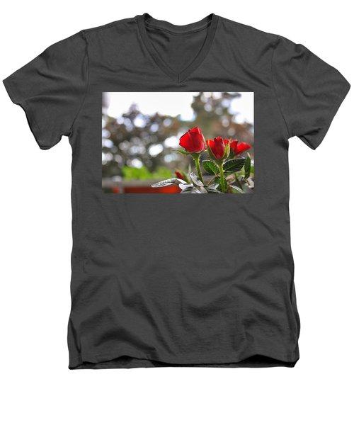 Red Roses Men's V-Neck T-Shirt by Daniel Precht