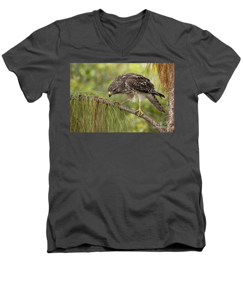 Red Shouldered Hawk Photo Men's V-Neck T-Shirt