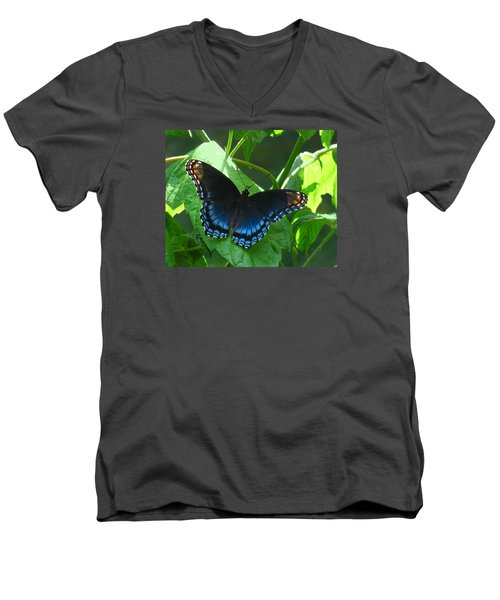 Red-spotted Admiral Butterfly Men's V-Neck T-Shirt