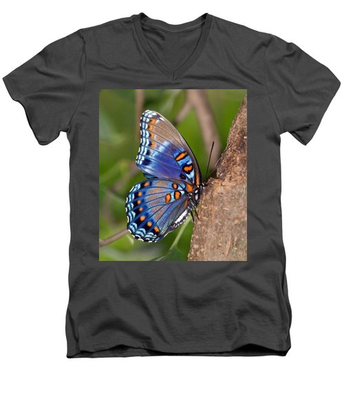 Red Spotted Purple Butterfly Men's V-Neck T-Shirt