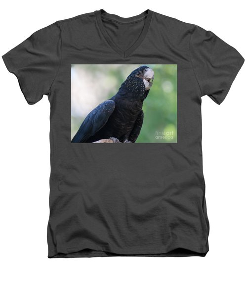 Red-tailed Black Cockatoo Men's V-Neck T-Shirt by Bianca Nadeau