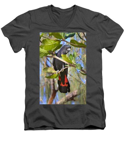 Red-tailed Black-cockatoo Queensland Men's V-Neck T-Shirt