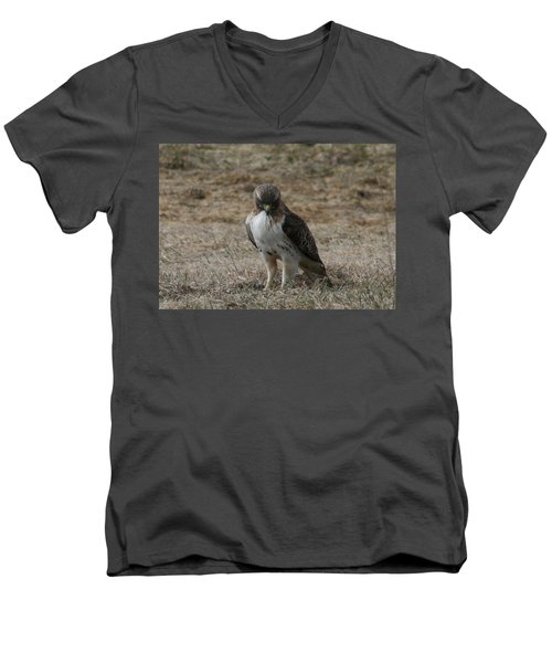 Men's V-Neck T-Shirt featuring the photograph Red Tailed Hawk by Neal Eslinger