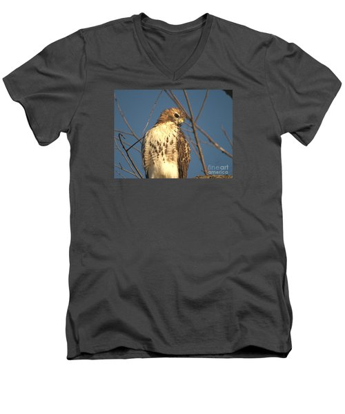 Men's V-Neck T-Shirt featuring the photograph Red Tailed Hawk  by Susan  Dimitrakopoulos